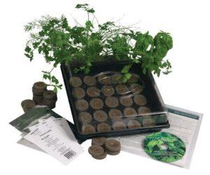 herb-garden-starter-kit